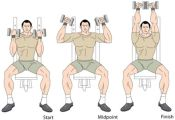 arnold-shoulder-press-animation