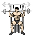 shoulder-workout-routine-behind-the-neck-press