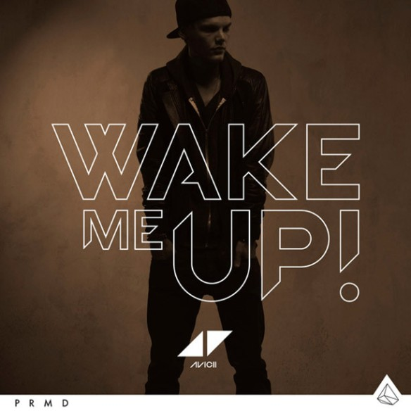 Avicii – Wake Me Up (Extended Mix)